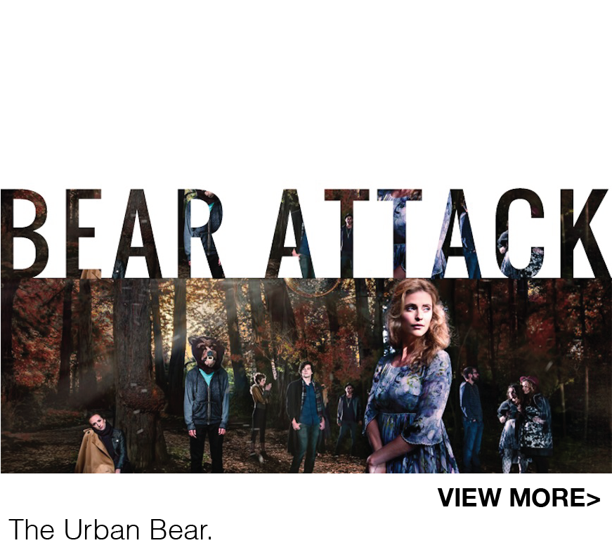 bearattack2